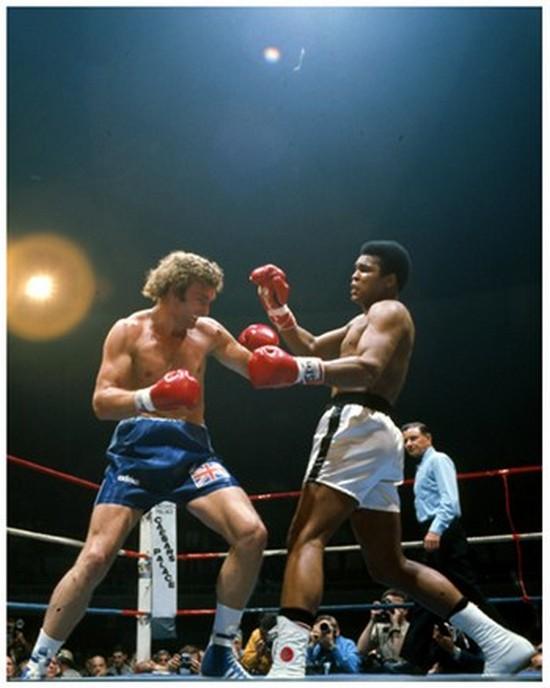 Gallery of Champions Muhammad Ali vs. Joe Bugner #288 Poster Print (8 x 10) at Sears.com