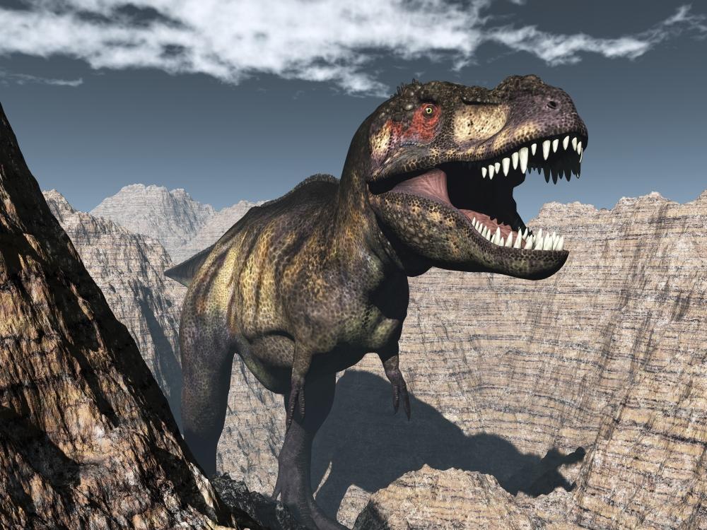 Tyrannosaurus Canyon Tyrannosaurus rex roar...